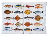 Fish & Shellfish Tea Towels & Dish Towels