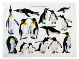 Penguin Tea Towels & Dish Towels