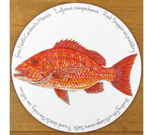 Red Snapper Tablemat by Richard Bramble