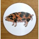 Richard Bramble Oxford Sandy Black Pig Coaster