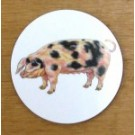 Richard Bramble Gloucester Old Spot Pig Coaster
