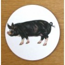 Richard Bramble Berkshire Pig Coaster