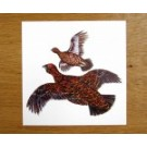 Red Grouse Greetings Card