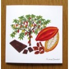 Cacoa Tree and Chocolate Card