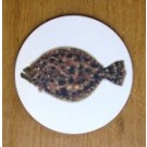 Richard Bramble Summer Flounder Coaster