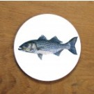 Richard Bramble Striped Bass Coaster