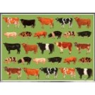 Farmyard Gift Wrapping Paper