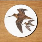 Richard Bramble Snipe Coaster