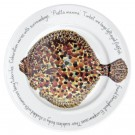 Turbot 30cm Flat Rimmed Plate by Richard Bramble