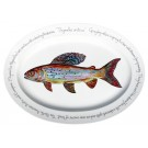 "Richard Bramble Arctic Grayling 39cm Oval (15.4"")"