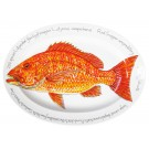 39cm Oval Red Snapper