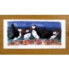 Puffins on the Rocks card