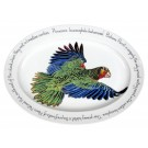 Amazonian Parrot Oval by Richard Bramble made by Jersey Pottery