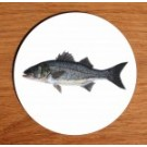 Richard Bramble Sea Bass coaster
