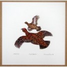 Richard Bramble Red Grouse Print