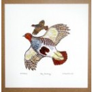 Grey English Partridge Print