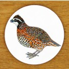 Bobwhite Quail Coaster by Richard Bramble