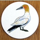Gannet Standing Coaster by Richard Bramble