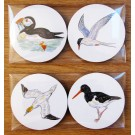 Richard Bramble Seabirds Gift Coaster Pack