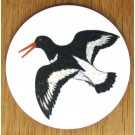Oystercatcher Flying Coaster by Richard Bramble