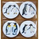 Richard Bramble Penguins Gift Coaster Pack