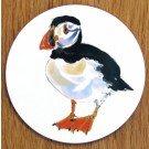 Puffin Standing Coaster by Richard Bramble