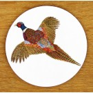Ring Necked Pheasant Coaster by Richard Bramble