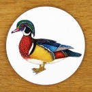 Wood Duck Coaster by Richard Bramble