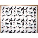 Puffins unbleached organic cotton fabric