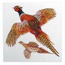 Richard Bramble Pheasant Greeting Card