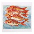 Richard Bramble Red Mullet Greeting Card