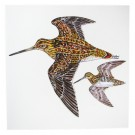 Richard Bramble Snipe Greetings Card