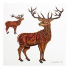 Richard Bramble Stags Greeting Card (square)