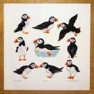 Puffins Limited Edition Print by Richard Bramble