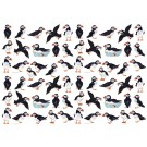 Puffins Gift Wrapping Paper by Richard Bramble