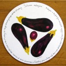 Aubergine Tablemat by Richard Bramble
