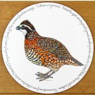 Bobwhite Quail Tablemat by Richard Bramble
