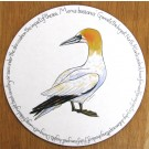 Gannet Standing Tablemat by Richard Bramble