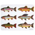 Richard Bramble Trout Collection Large Rectangular Tablemat