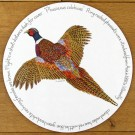 Ring Necked Pheasant Tablemat by Richard Bramble