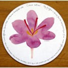 Saffron Tablemat by Richard Bramble
