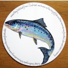 Richard Bramble Salmon Tablemat