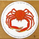 Spider Crab Tablemat by Richard Bramble