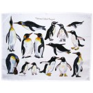 Penguin Tea Towel by Richard Bramble