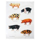 Richard Bramble Pigs Tea Towel