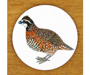 Richard Bramble Bobwhite Quail Coaster