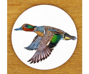 Richard Bramble Green Winged Teal Coaster