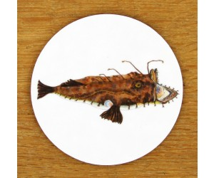 Richard Bramble Monkfish Coaster
