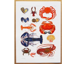 Richard Bramble Shellfish Print