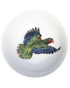 Parrot 13cm Bowl by Richard Bramble